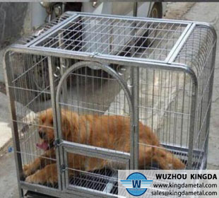 Commercial iron dog cage